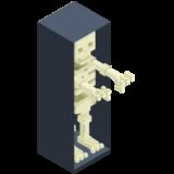 Skeleton in closet